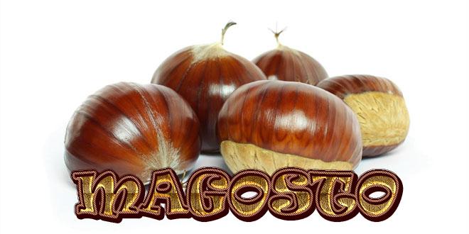 Resultado de imagen de MAGOSTO